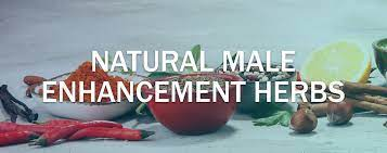 natural herbs for male enhancement